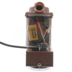 "006 Plumb n' Plug Pump w/ Line Cord, Analog Timer 3/4"" Sweat (1/40 HP) Product Image"