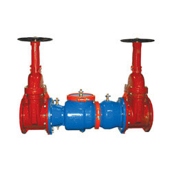 """10"""" 350 Double<br>Check Valve Assembly<br>w/ Shut-off Gate Valve Product Image"""