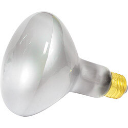 65BR30/F Incandescent Reflector Lamp, 120v<br>(65 Watts) Product Image