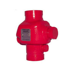 "4"" Grooved Check Valve Product Image"