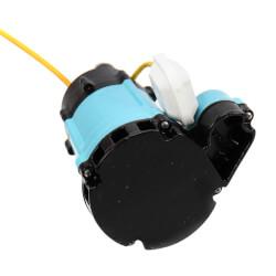 HT-10E-CIA-FS 1/2 HP<br>80 GPM, 115V Submersible Auto Effluent Pump Product Image