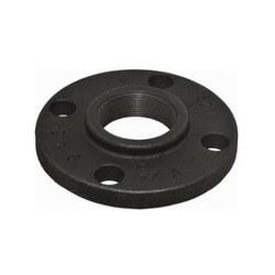 "6"" x 11"" Black Cast Iron Blind Flange, Class 125 Product Image"