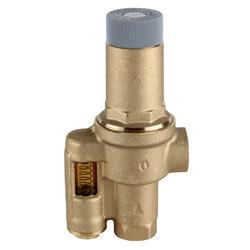 "3/4"" Differential Pressure Regulator Product Image"