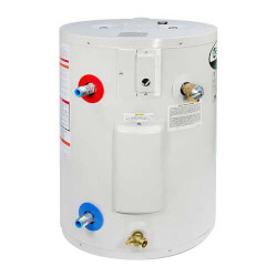 19.9 Gallon ProMax Compact Residential Electric Water Heater (240V)