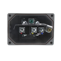 """1"""" NPT Flow Switch<br>(SS Paddles) Product Image"""