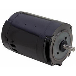 56C 3-Phase Squirrel Cage  Pool Pump Motor (208-230/460V, 3450 RPM, 3 HP) Product Image