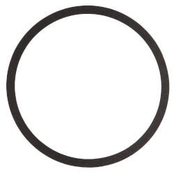 Volute Gasket (for Series 1510, 1531, 60 and PD Pumps) Product Image