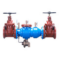 "10"" Reduced Pressure Principle Assembly w/ OS&Y Gate Valves"