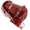 Ball Bearing Motor, 3/4 HP (PD-37T, Series 60)