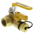 "1-1/4"" Pro-Pal Full Port Forged Brass Ball Valve w/ Hi-Flow Hose Drain & Reversible Handle"