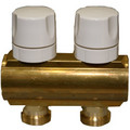 "2 Loop 1-1/4"" Valved Manifold (Includes Mounting Bracket) (EK20)"