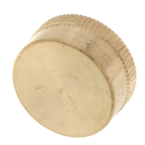 Garden Hose Cap