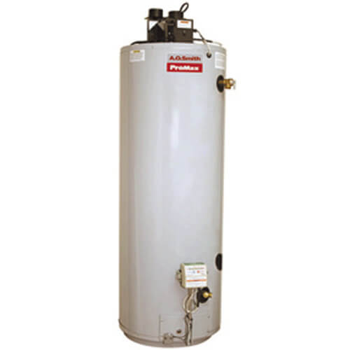 50 Gallon ProMax Power Direct Vent Residential Water Heater (LP Gas)