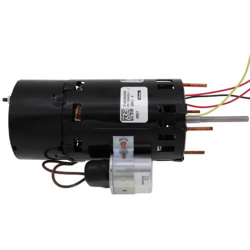 230V Combustion Blower Motor, 1/16HP